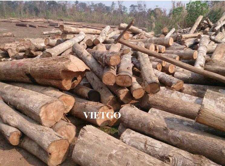 Vietnam Teak Wood Log And Sawn Timber Buy Teak Wood Teak Wood