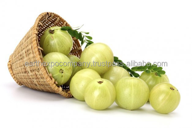 Indian Gooseberry Extract
