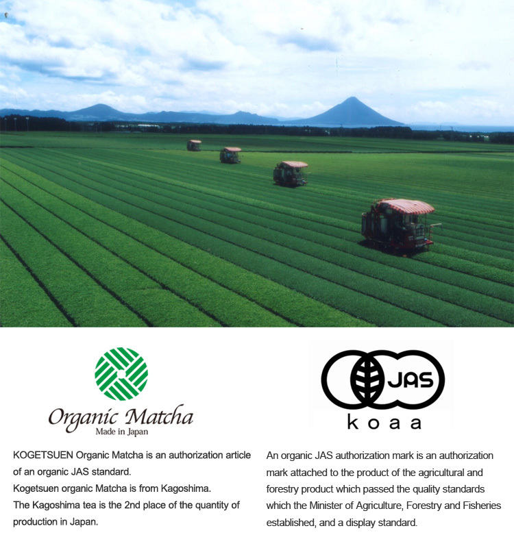 japanese organic matcha green tea powder made in japan