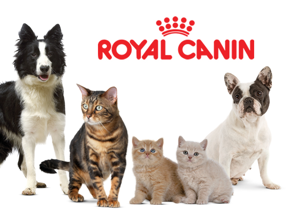 ROYAL CANIN MAXI ADULTO 15 KG di CIBO PER ANIMALI
