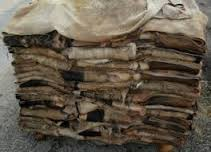 Top Quality Dry and Wet Salted Donkey / Goat Skin / Cow Hides