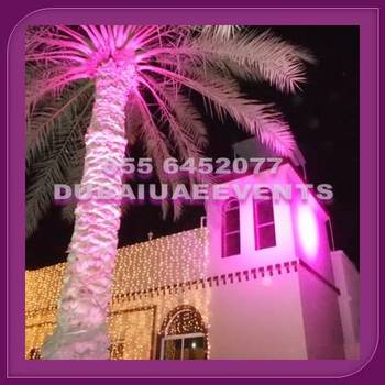 Wedding decoration light rental by dubai uae events buy fairy wedding decoration light rental by dubai uae events junglespirit Gallery