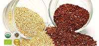Certified Organic - Conventional White/ Red/ Black Quinoa