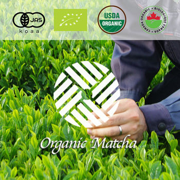 High quality Good quality Organic tea of kogetsuen at reasonable prices