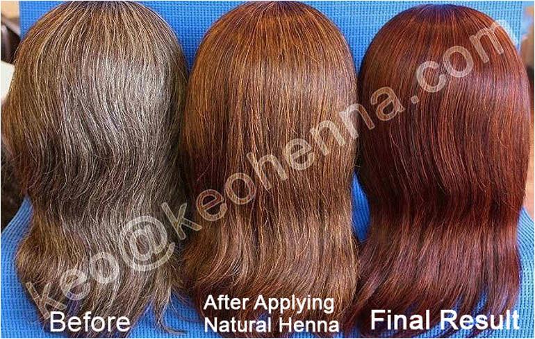 Henna Hair Treatment Powder Buy Henna Hair Treatment Powder