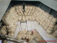 ordinary cement portland 42.5 in vietnam FOB, CIF price cement