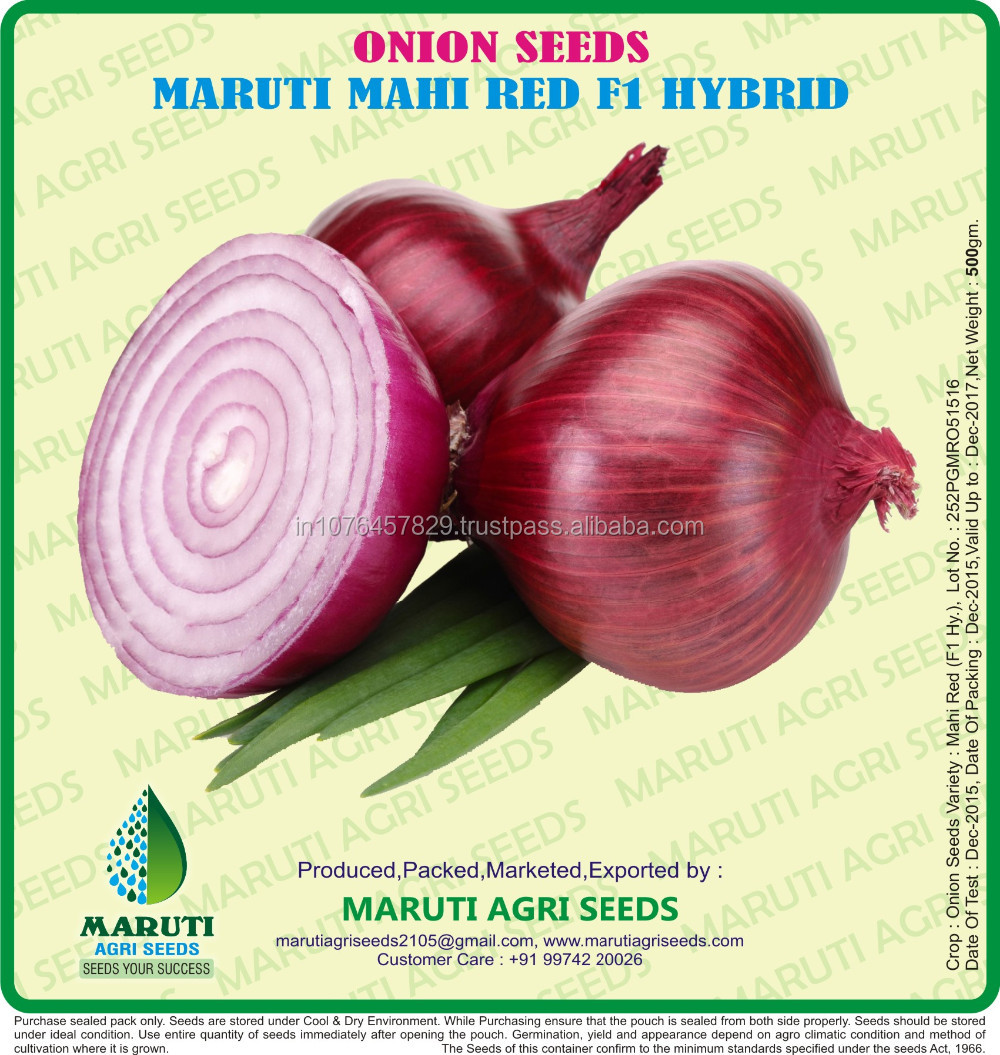 Onion Seeds - Bombay Red For Netherlands