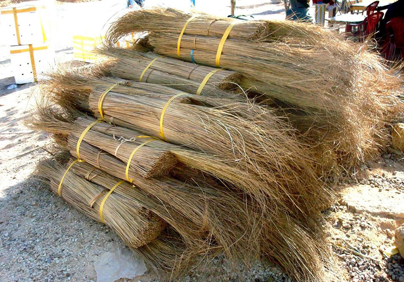 Coconut broom sticks, coconut ekel broom for sale