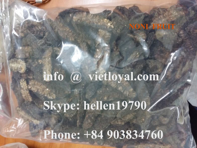 Top quality Spray dried Noni fruit NONI FOR EXPORTING