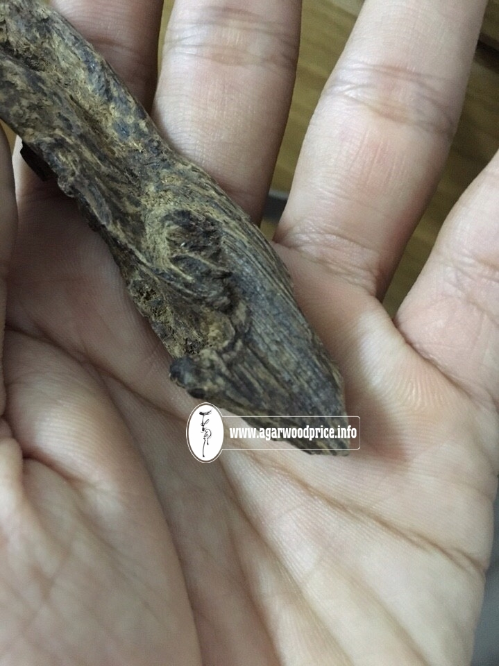 Price for Special Wild underwater Agarwood chips - A Precious Value wood with CITES