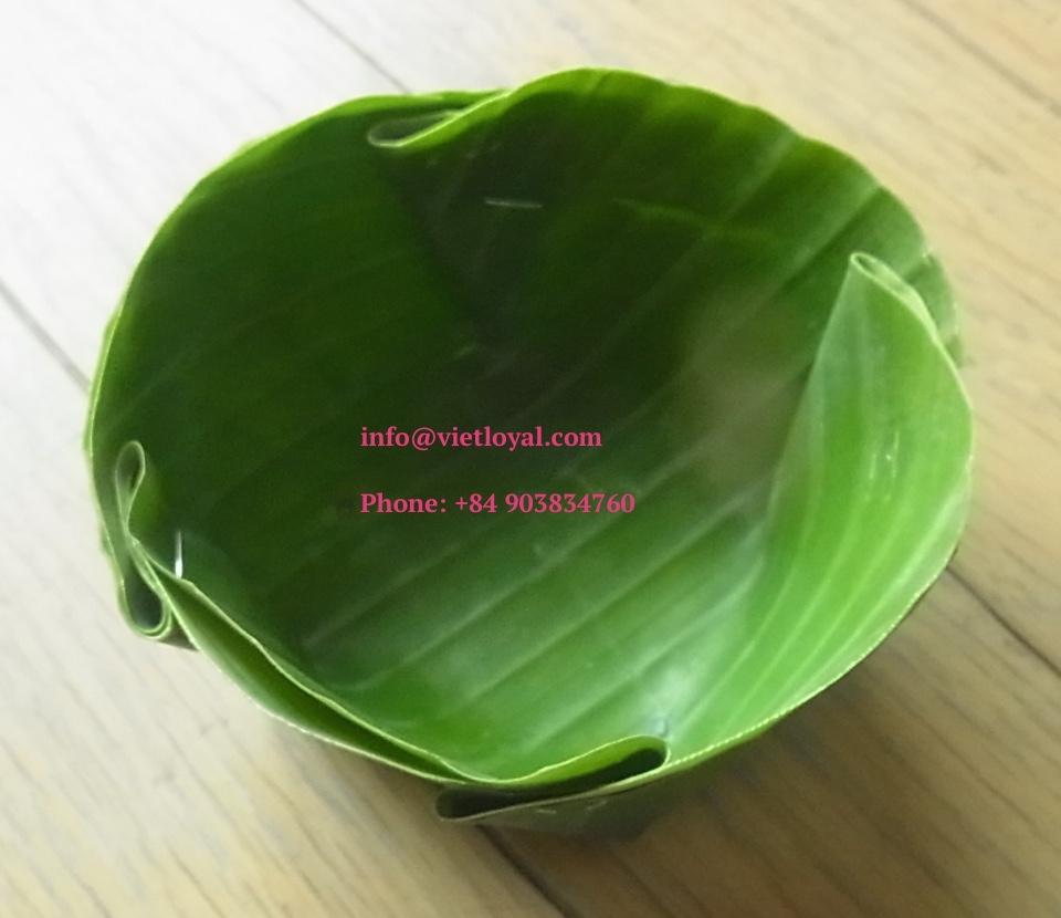 Fresh Dried Banana Leaf For Sale Banana Leaf Plates