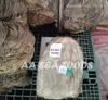 Cow salted omasum Beeef Salted Omasum Dried Ready For Shipment