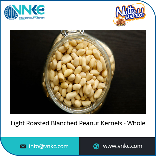 Excellent Quality Whole Light Bold Roasted Blanched Peanut Kernels from Top Dealer
