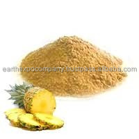 Spray Dried Pineapple Powder Exporter