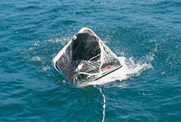 Arimar Life Raft International Offshore 6p - Buy Arimar Life Raft ...