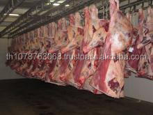 HALAL FROZEN BONELESS BEEF/BUFFALO MEAT FOR EXPORT