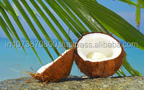 India coconut Exports and Imports