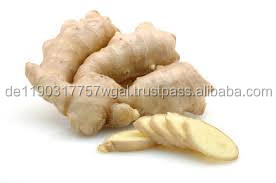 best price of fresh ginger for sale