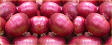 Premium Quality Red Onions from Hungary