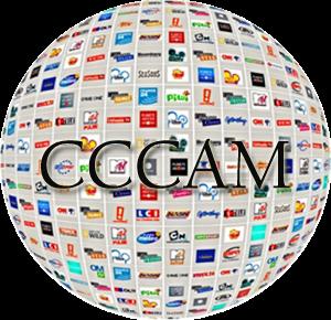 cccam cline account/iks line cccam account for euro decoder/ cline Cccam