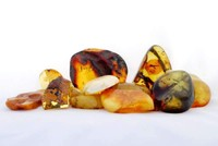 Land with the largest deposits of amber for sale in Poland