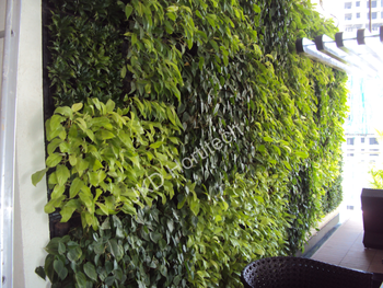 Green Wall Vertical Garden System With Living Plants Made Of Plastic  Planter Pot Container And Module