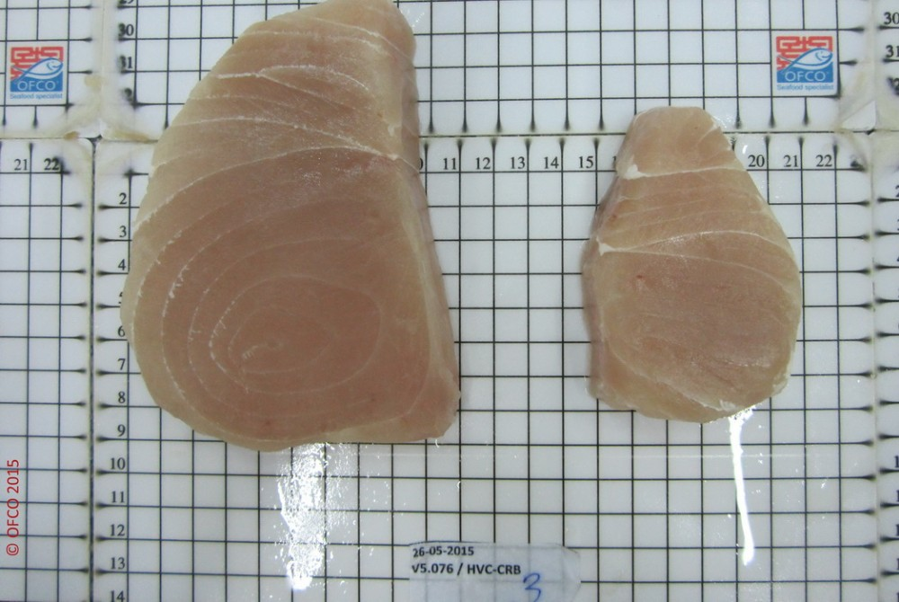 MARLIN STEAK - Frozen Fish Inspection Quality Control
