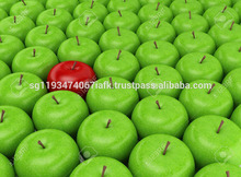 fresh paper bagged fuji apple/delicious apple/fruit products
