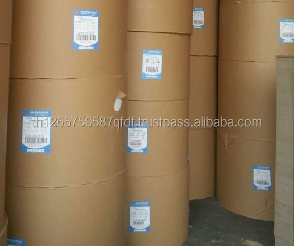 Duplex board paper/ white back peper , Ivory board / Kraft Papers in roll / Gloss /uncoated papers and offset printing