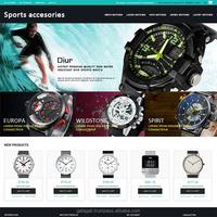 Custom Indian Magento Website Design and Development at Best Price