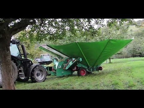 apple scratching machine | Apple Harvest in Fruit Farm | apple plantation