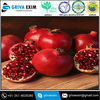 Indian Red singal raw Pomegranate