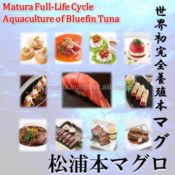 Matsuura bluefin tuna is a luxury food I want to eating a nice tableware set.