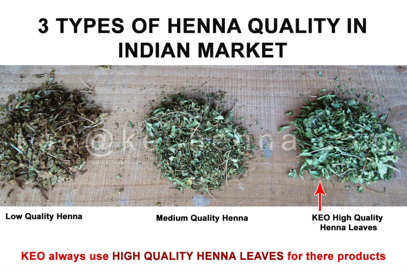 Wholesale Pure Rajasthani Henna Leaf Powder Buy Henna Leaf Powder