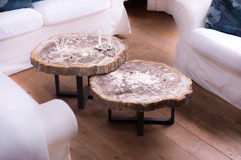 Bois Tables Table En Buy Product table Pétrifié On Pétrifié Basse nNkX0w8OP