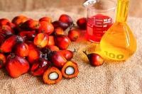 Bulk Refined Palm Oil