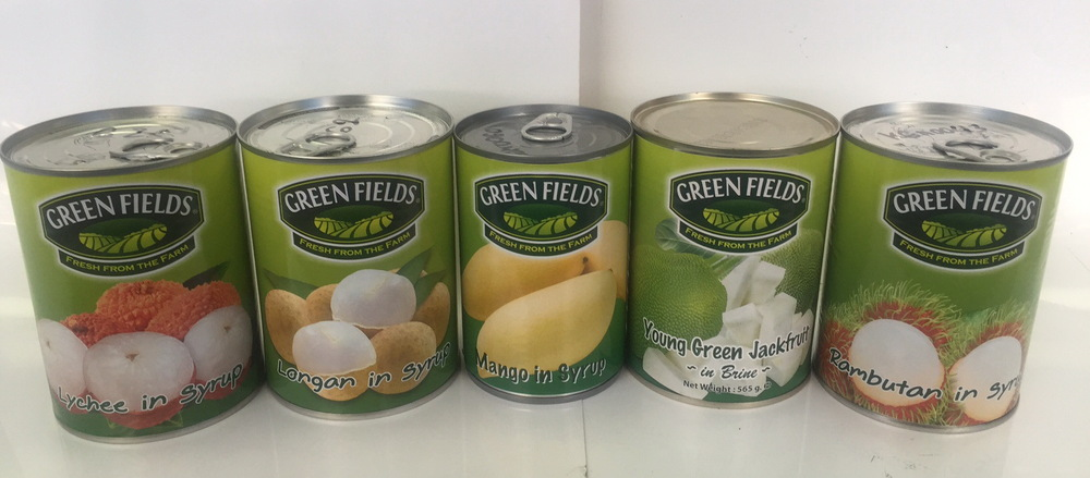 Canned Young Green Jackfruit (565 G) From Thailand