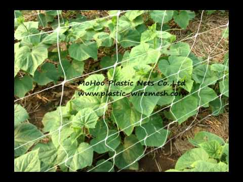 Cheap Trellis Netting Lowes find Trellis Netting Lowes deals on
