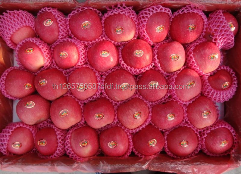 New season grade A red fuji/gala fresh apple