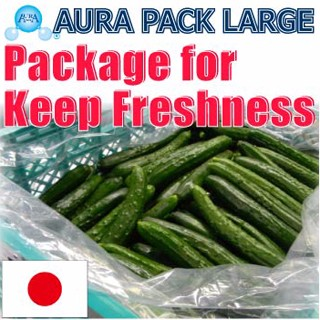 High quality and anti-fogging Vegetable Importers For Distribution packaging bag