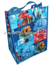 made in vietnam green pp woven shopping bag