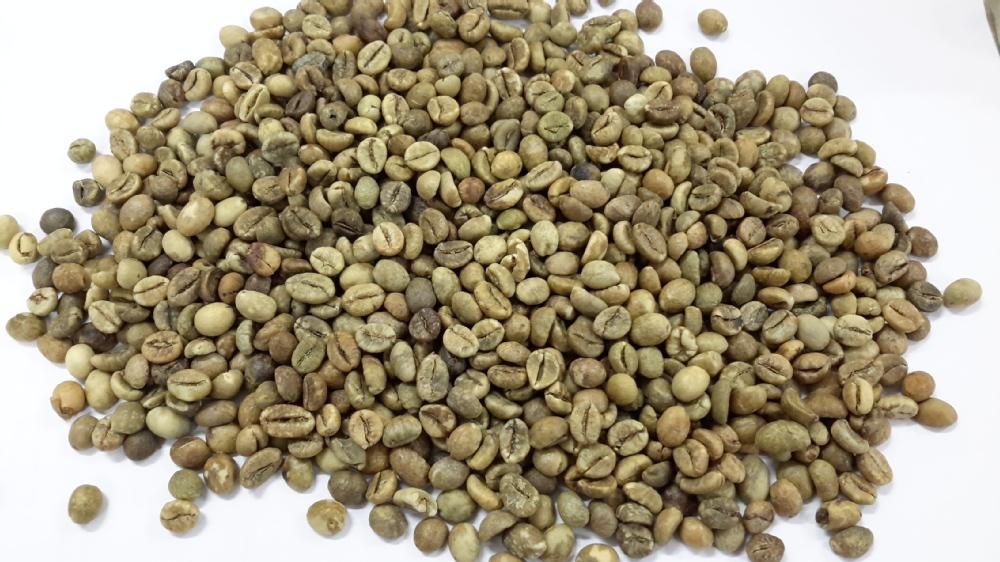 Vietnam Arabica Coffee Beans Scr 16 Unwashed (skype: Davis.thong ...
