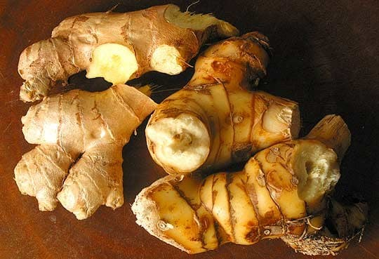 GALANGAL +84972339010 whatsapp