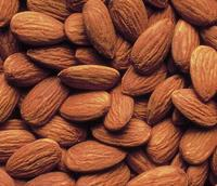 Best Quality Almond Nuts / Raw Natural Almond Nuts / Organic Bitter Almonds