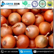 Red Wholesale spring Onion