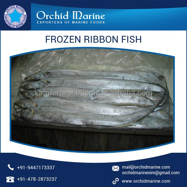 Leading Manufacturer of Juicy Ribbon Fish for Various Seafood Dishes