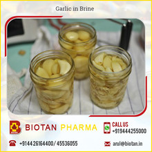 Hot Selling Newly Produced Garlic in Brine for Bulk Buyers