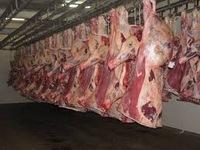 High Quality Frozen lamb/goat/mutton whole carcass 4 / 6 /10 way cuts at good prices