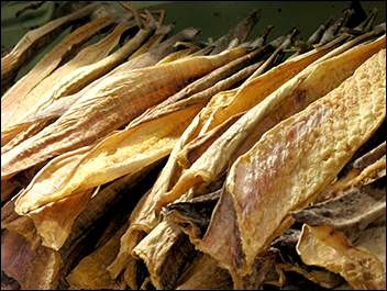 Whole sale Dried stock fish Dried cod fish for sale