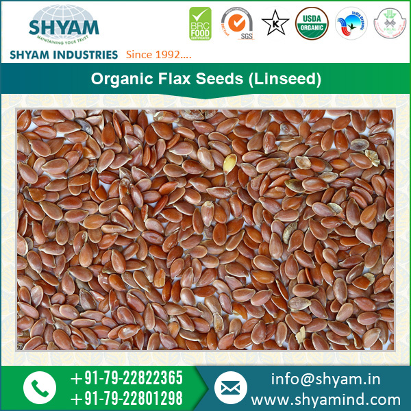 Purchase Nutritious Organic Flax Seeds from Indian Supplier